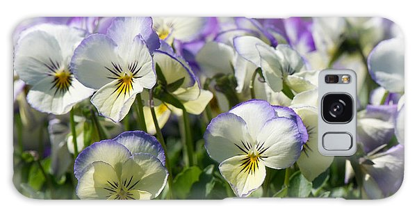 Pansies In Loomis Galaxy Case