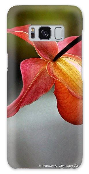 Paphiopedilum Orchid - Slipper Orchid Galaxy Case