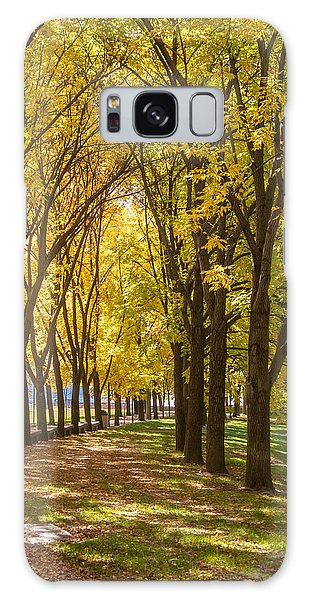 Parade Of Trees Galaxy Case