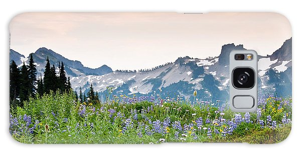 Paradise Meadows And The Tatoosh Range Galaxy Case