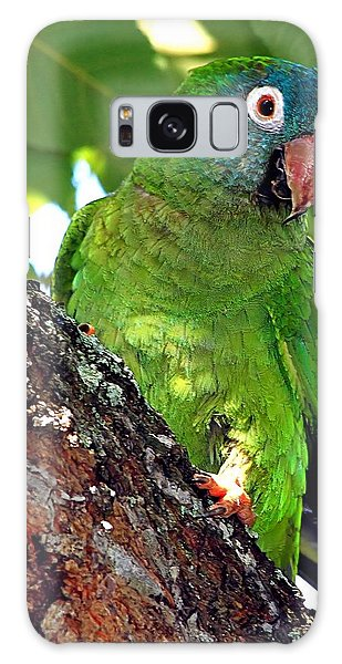 Parakeet In A Tree Galaxy Case