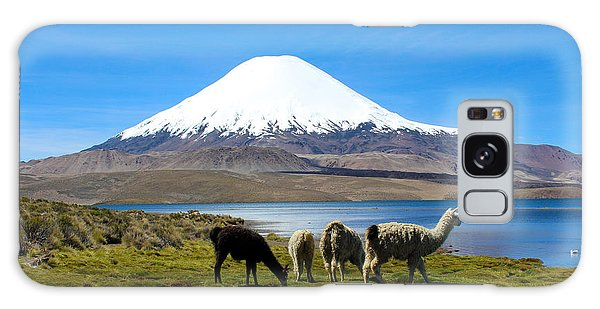 Parinacota Volcano Lake Chungara Chile Galaxy Case