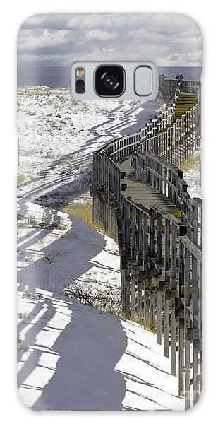Parker River National Wildlife Refuge Boardwalk Plum Island Galaxy Case by Betty Denise