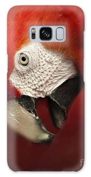 Parrot Portrait Galaxy Case