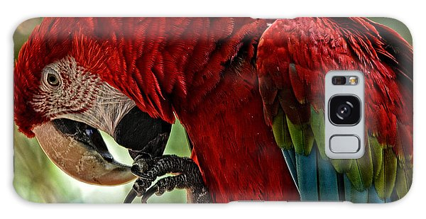 Parrot Preen Hdr Galaxy Case