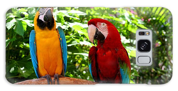 Parrot's Perch Galaxy Case