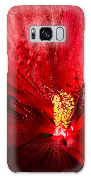 Passionate Ruby Red Silk Galaxy Case