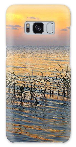 Pastel Shoreline 1 Galaxy Case
