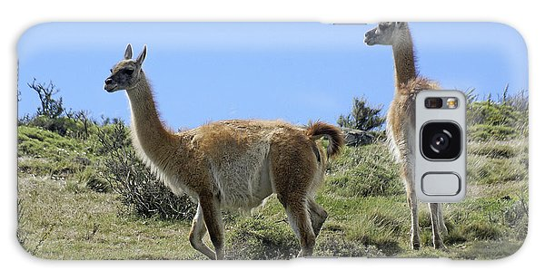 Llama Galaxy S8 Case - Patagonian Guanacos by Michele Burgess