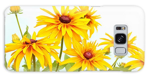 Patch Of Black-eyed Susan Galaxy Case