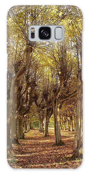 Path 2 - Garden Photography Galaxy Case