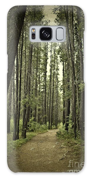 Path In The Woods Galaxy Case