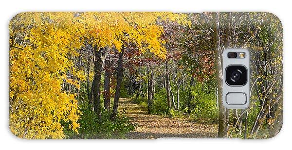 Path Through Autumn Trees Galaxy Case