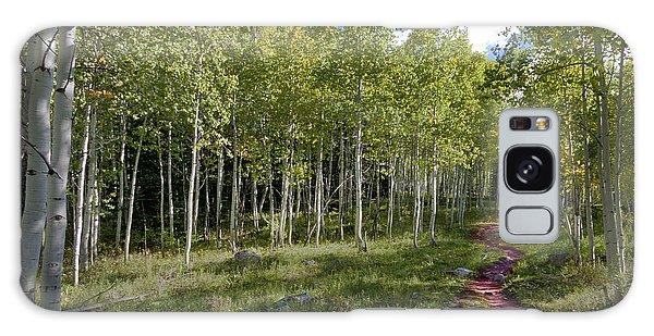 Path Through The Aspens In Colorado Galaxy Case by Karen Stephenson