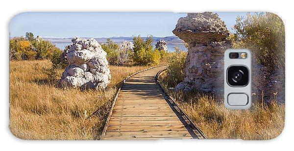 Path To Mono Lake Galaxy Case