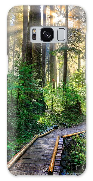 Olympic National Park Galaxy Case - Pathway Into The Light by Inge Johnsson