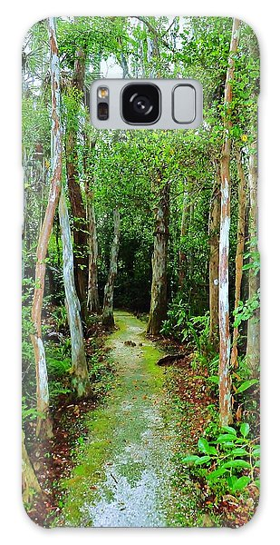 Pathway To The Rainforest Galaxy Case