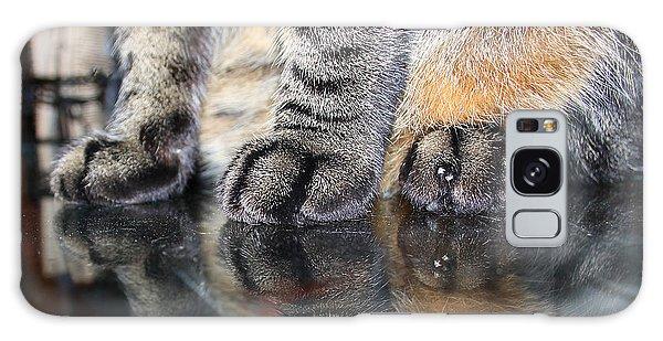 Paws Galaxy Case