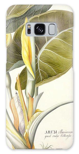 Plants Galaxy Case - Arum Maximum by Georg Dionysius Ehret