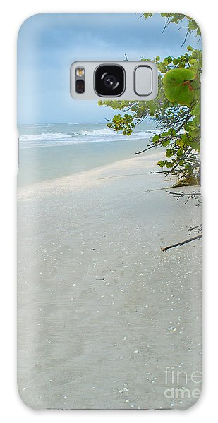 Peace And Quiet On Sanibel Island Galaxy Case