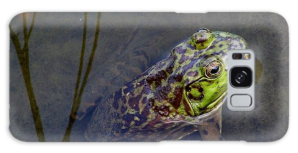 Peace Frog Galaxy Case