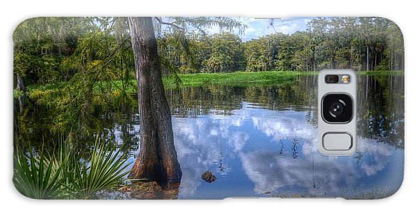Peaceful Florida Galaxy Case by Timothy Lowry
