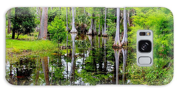 Grass Snake Galaxy Case - Peaceful Lake by Carey Chen