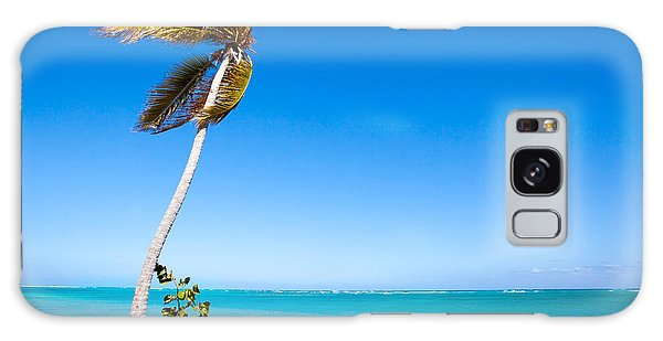 Peaceful Palm Tree Galaxy Case