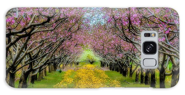 Peach Blossoms Dandelion Carpet Galaxy Case