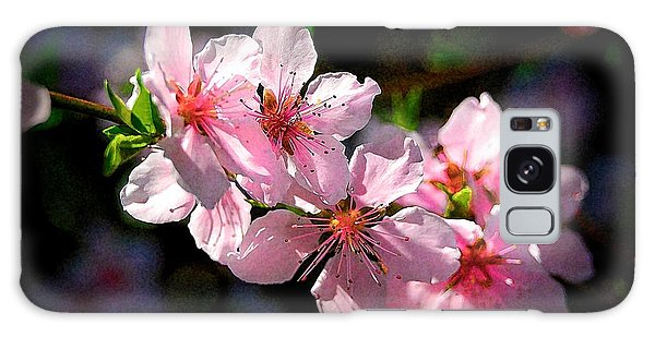 Peach Blossoms Galaxy Case by Ludwig Keck