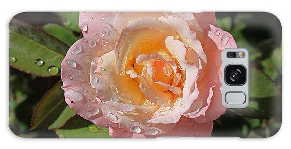 Peach Rose Galaxy Case