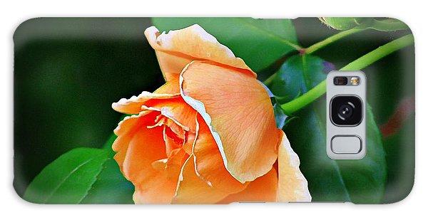 Peach Rose Galaxy Case by Karen McKenzie McAdoo
