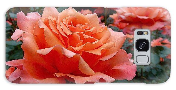 Peach Roses Galaxy Case