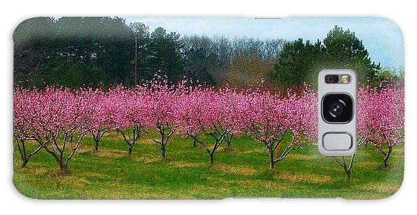 Peach Tree Grove By Jan Marvin Galaxy Case