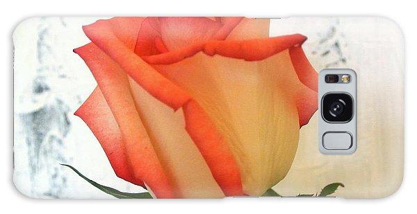 Peach Trim Rose Galaxy Case