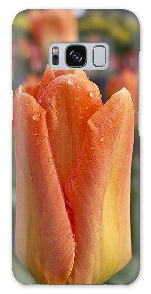 Galaxy Case featuring the photograph Peach Tulip by Priya Ghose
