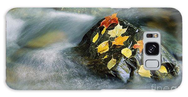 Peacham Brook In Fall Galaxy Case by Alan L Graham