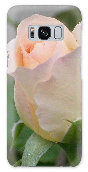 Fragile Peach Rose Bud Galaxy Case by Belinda Lee