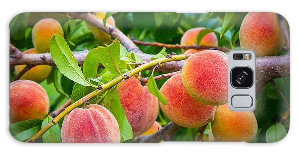 Peaches Galaxy Case by Inge Johnsson