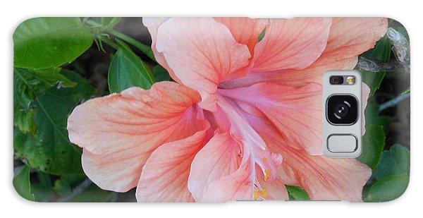 Peachy Hibiscus Galaxy Case