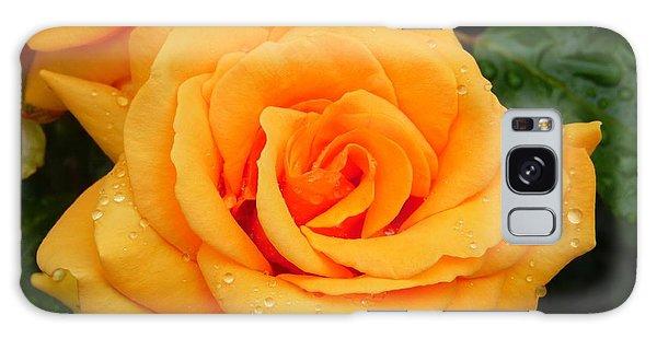 Peachy Rose Galaxy Case