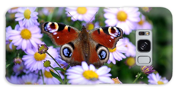 Peacock Butterfly Perched On The Daisies Galaxy Case