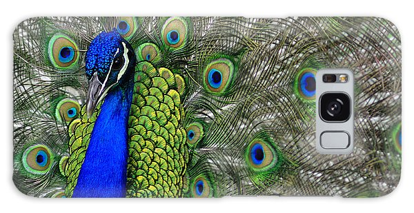 Peacock Head Galaxy Case