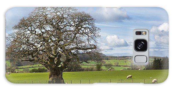 Peak District Tree Galaxy Case