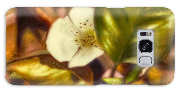 Pear Blossom Galaxy Case