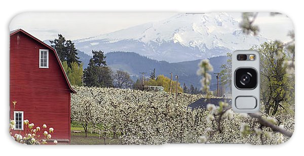 Pear Tree Orchard In Hood River Oregon Galaxy Case