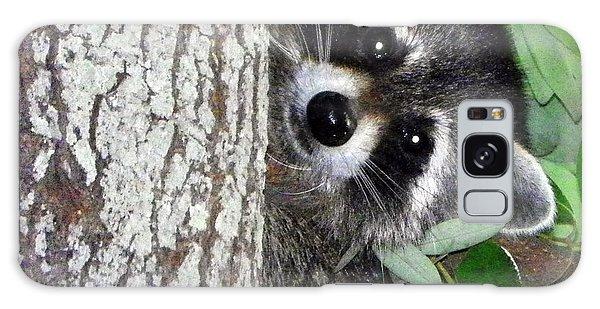 Peek A Boo Raccoon Galaxy Case