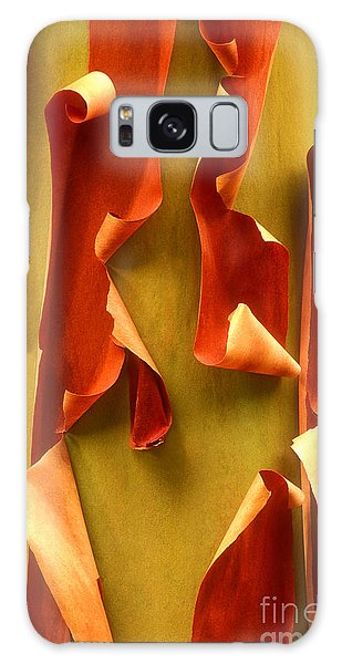 Peeling Bark Pacific Madrone Tree Washington Galaxy Case by Dave Welling