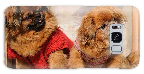 Pekingese Pair Galaxy Case by Jeremy Voisey