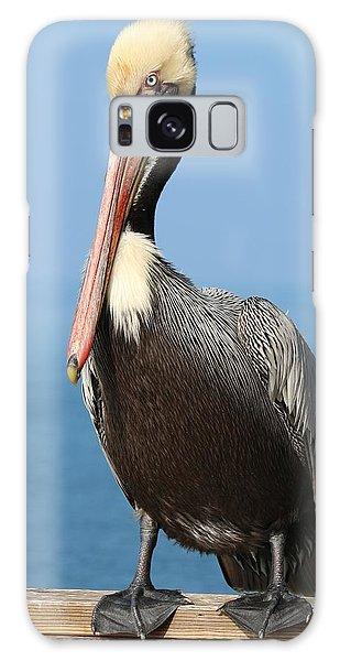 Pelican - 3  Galaxy Case